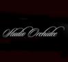 Studio Orchidee St-Martin logo